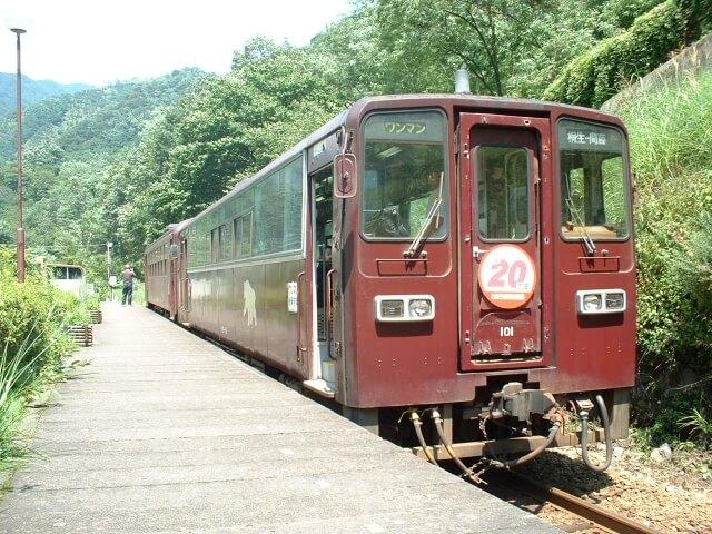2両編成の茶色いわたらせ渓谷鉄道